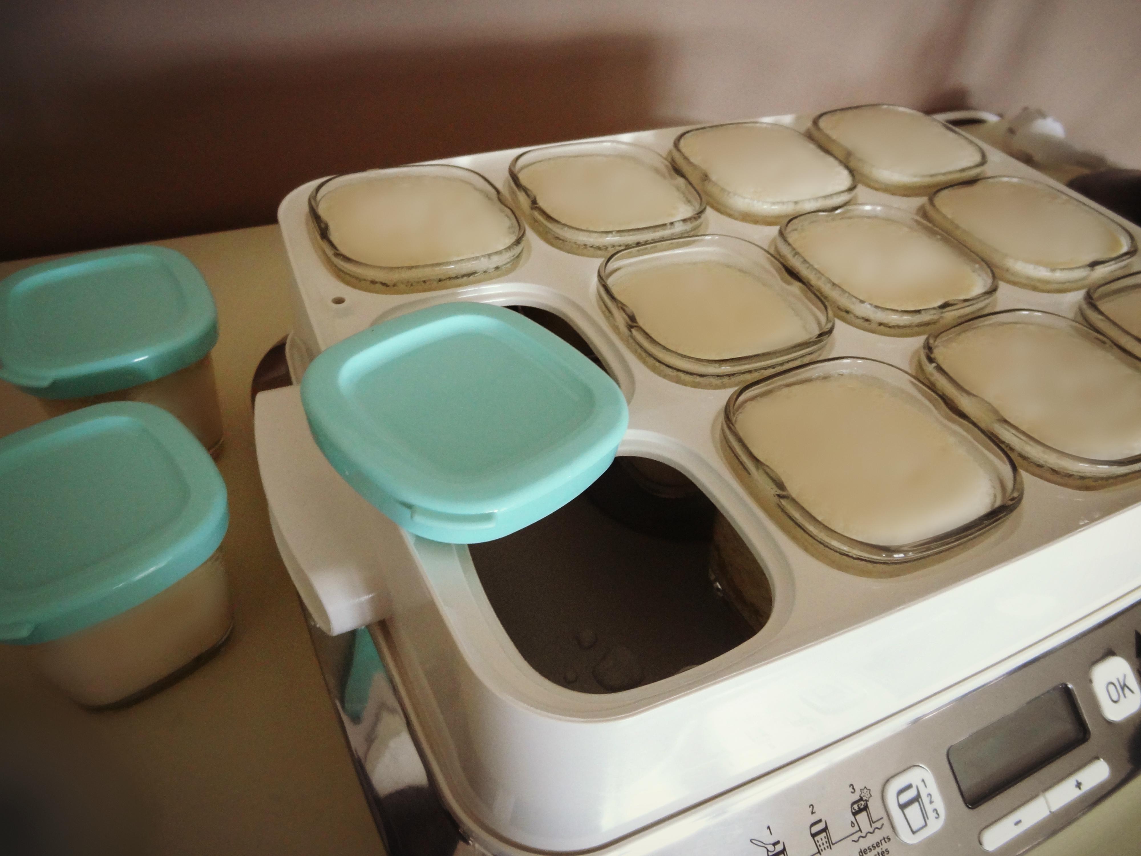 yaourts au lait de soja maison bio conomique et pas d gueu sans foie ni l 39 oie. Black Bedroom Furniture Sets. Home Design Ideas